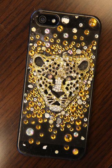 גם הטלפון הסלולרי מנומר (צילום: אורית פניני)