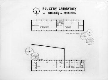 תוכנית של אחד הבניינים הישנים (באדיבות המרכז האקדמי רופין)