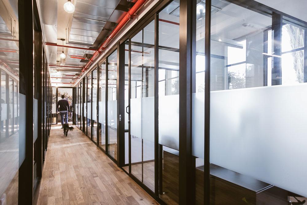 המשרדים עצמם מעוצבים בצורה אחידה (את האופי יכניסו החברים עם הזמן, אומר זינגר). הכניסה לכלבים מותרת (צילום: שירן כרמל)