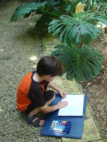המטרה: לצייר ג'ונגל סבוך וצבעוני (צילום: מירי לשם-פלאי)