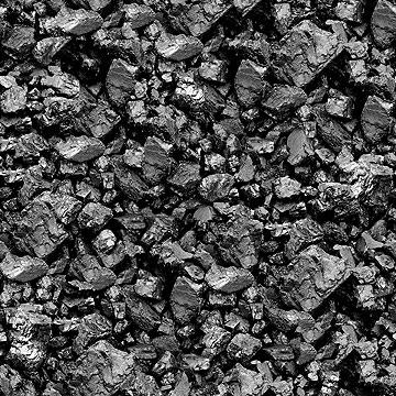 פחם. תוסף תזונה לאדמה (צילום: שאטרסטוק)