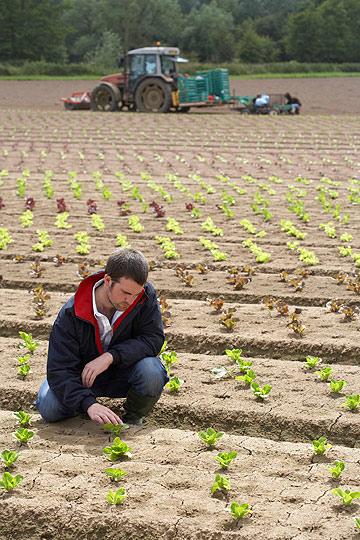 """זוכר את הקטע הזה בתנ""""ך, שאדם וחווה היו לגמרי לבד? אז אתה אדם, זו החווה, ואתה הולך להיות לגמרי לבד אם לא תצא משם (צילום: thinkstock)"""