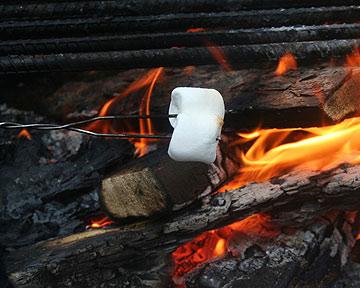 מרשמלו על האש. אפשר גם פירות (צילום: thinkstock)