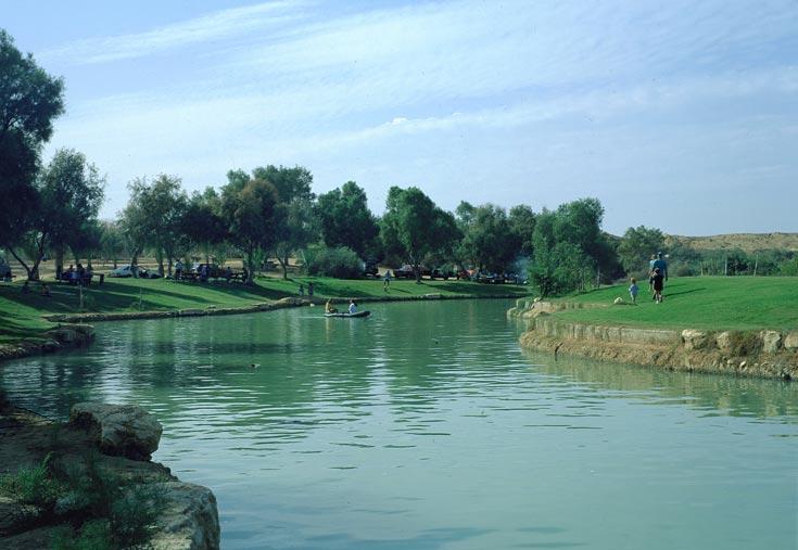 להתרענן בפארק אשכול (צילום:ארכיון הצילומים קקל, אילה און)