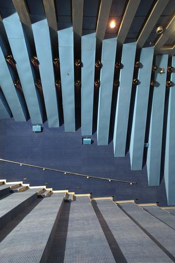 האולם הכחול. אחד הסינמטקים הגדולים בעולם, מתגאה גילה אלמגור (צילום: אמית הרמן)