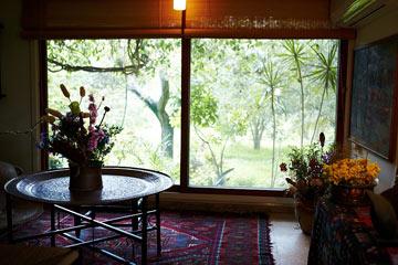 הנוף הנשקף מחלונות הסלון (צילום: ניקיטה פבלוב)