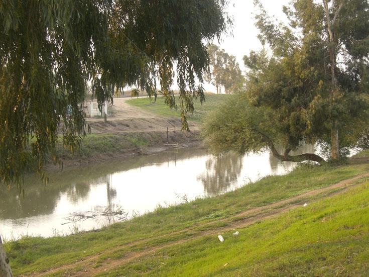 והנה קצת מים. נהר הירדן (צילום: אריאלה אפללו)