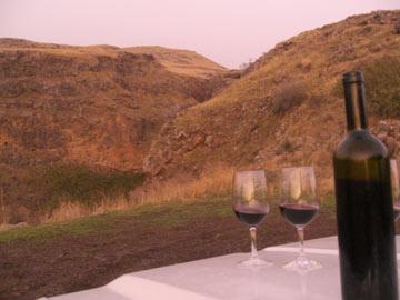 לחיים. יין בנחל חמדל (צילום: אריאלה אפללו)