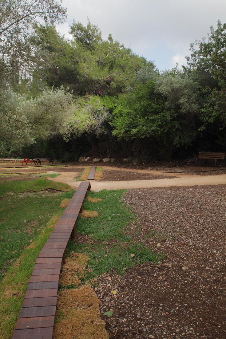 בצד אחד של המתחם יש מסלול טכני מגשרוני-עץ ומקפצות לשיפור מיומנויות הרכיבה והטכניקה (צילום: אמית הרמן)