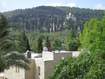הנוף מגג המלון (צילום: אלירן מלכה)