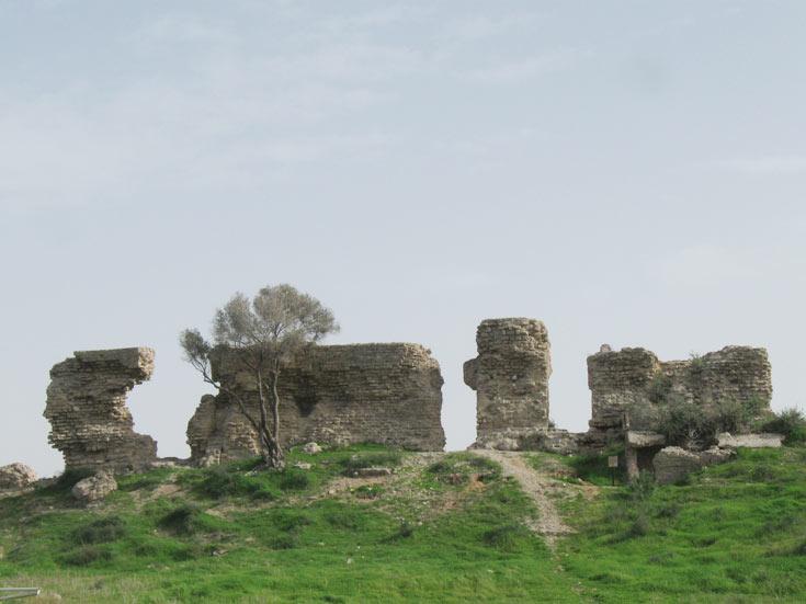 שרידי מבנים מפוארים (צילום: אריאלה אפללו)