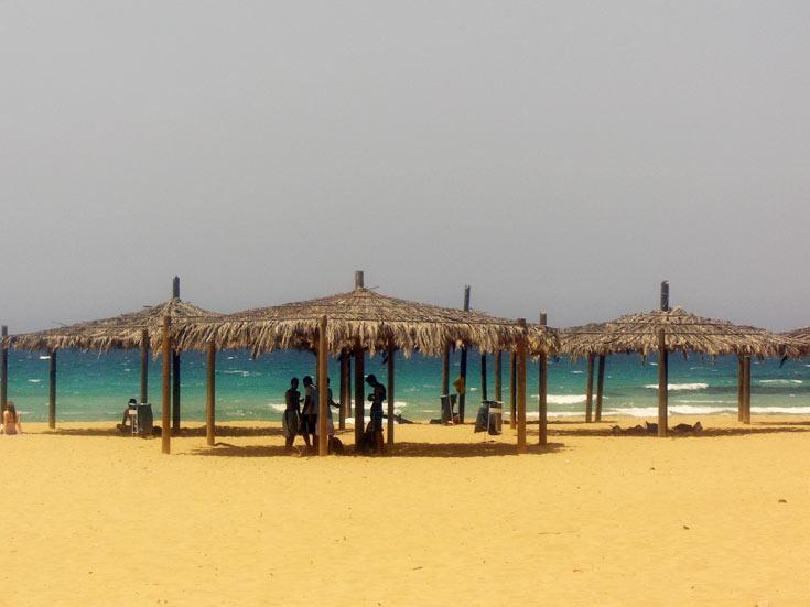 חוף אכזיב. רצועת חוף פראית (צילום: אריאלה אפללו)
