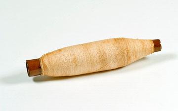 הסליל הראשון של אתא (צילום: אוסף יונתן ורחל מולר)