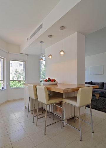דירה ישראלית לדוגמה, מודל 2011 (צילום: שי אדם)