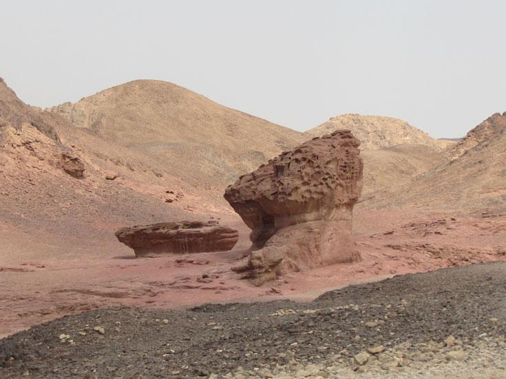 סלעים בצורת ברוקולי ולחם (צילום: דרור זבדי)