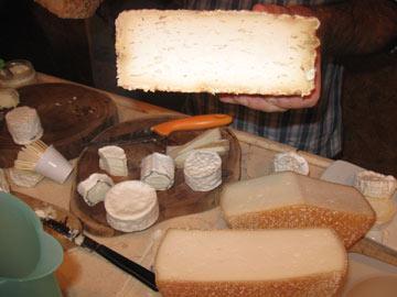 גבינות אורגניות בעופאים (צילום: אריאלה אפללו)