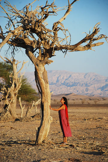 מתמזגים עם הטבע. יוגה במדבר (צילום: דין לנדאו)