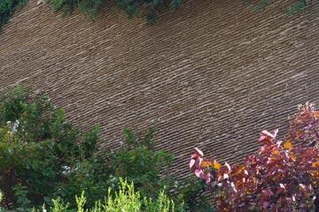 פרט מתוך קירות הכורכר במגדלי צמרת (צילום: דן צור וליאור וולף אדריכלי נוף)