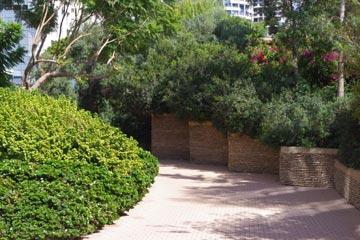הכניסה למגדלי צמרת בצפון תל אביב, בתכנון אדריכלי הנוף דן צור וליאור וולף (צילום: דן צור וליאור וולף אדריכלי נוף)