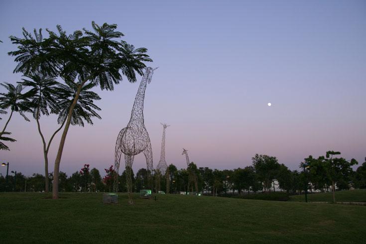 עשור שישי: פארק כפר סבא. כך תיכננו את הלב הירוק של העיר, עם אלפיים עצים שונים ומגוון עשיר של פעילויות (צילום: דן צור וליאור וולף אדריכלי נוף)
