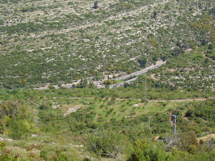 נוף הרי יהודה ופריחה מגוונת בימי החורף. פארק רבין, סמוך לבית שמש (צילום: אבישי טייכר )