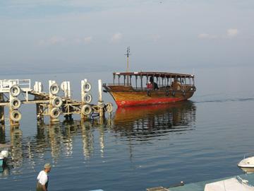 דגים ישר מהכנרת. נמל טבריה (צילום: אריאלה אפללו)