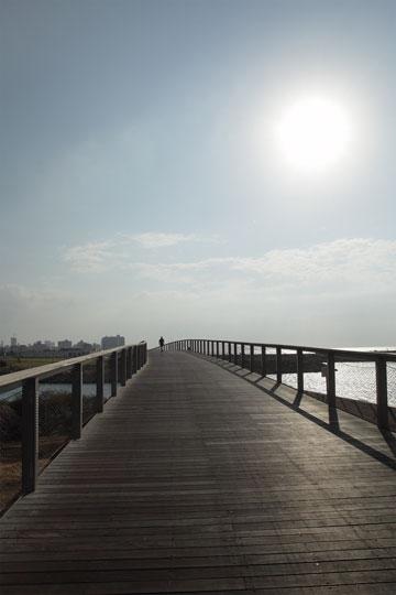 הגשר של הטיילת (צילום: אמית הרמן)