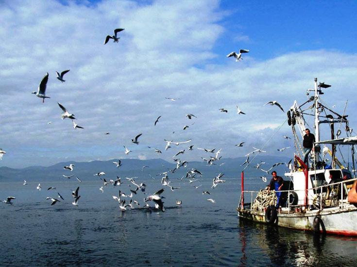 קסם ים כנרת. שייט אל הדייג (באדיבות תיירות עין גב)