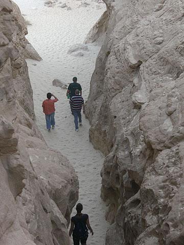 הליכה מאתגרת בתמנע (צילום: אריאלה אפללו)