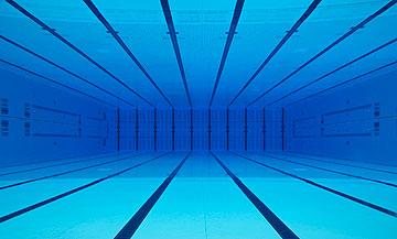 הבריכה. בהשראת יצורים ימיים (באדיבות Zaha Hadid Architects)
