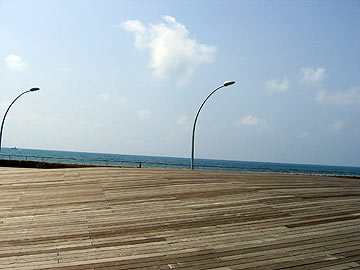חיפוי העץ שהפך לסמל המסחרי של פרויקט נמל תל אביב, אחד ממקומות הבילוי הפופולריים בישראל (צילום: רון אלמוג)
