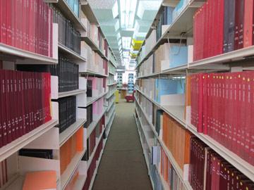אי-אפשר להתבלבל: זאת ספרייה (צילום: מיכאל יעקבסון)