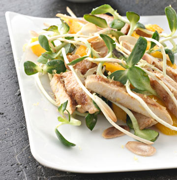 סלט חזה עוף, מנגו ונבטי חמנייה (צילום: גלעד וגיא צלמים, סגנון: דריה קרגולה)