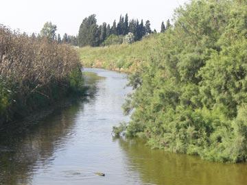 מסלול דיווש נוח לצד נחל אלכסנדר (צילום: אריאלה אפללו)