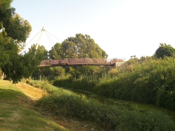 גשר צר מאוד. נחל אלכסנדר  (צילום: אריאלה אפללו)