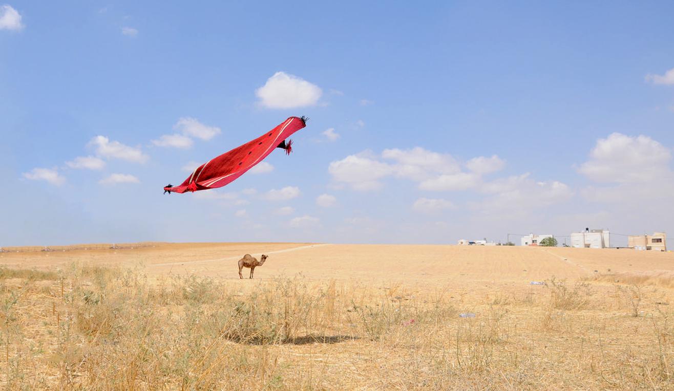 מה קרה לשטיחים שארגו נשות לקייה? לחצו לכתבה (צילום: איוב אבו מדיעם)
